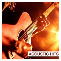 Různí interpreti – Acoustic Hits