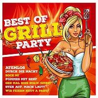 Různí interpreti – Best of Grillparty - 40 heisze Hits