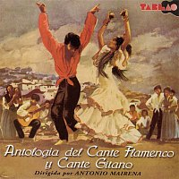 Various Artists.. – Antologia Del Cante Flamenco