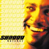 Shaggy – Hot Shot