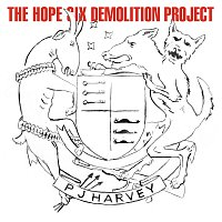 PJ Harvey – The Hope Six Demolition Project