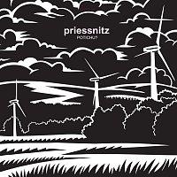 Priessnitz – Potichu?