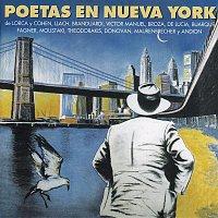 Angelo Branduardi – Poetas en Nueva York