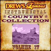 The Hit Crew – Drew's Famous Instrumental Country Collection [Vol. 17]
