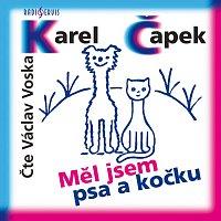 Václav Voska – Měl jsem psa a kočku