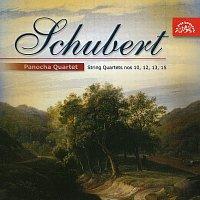 Panochovo kvarteto – Schubert: Smyčcové kvartety