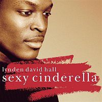 Lynden David Hall – Sexy Cinderella