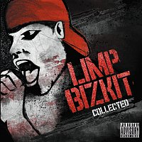 Limp Bizkit – The Collection