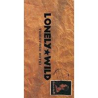 Tomoyasu Hotei – Lonely Wild
