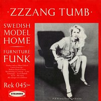 Zzzang Tumb – Swedish Model Home