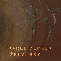 Karel Vepřek – Želví sny