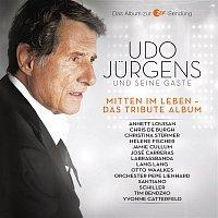 Annett Louisan – Mitten im Leben - Das Tribute Album