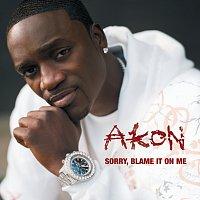 Akon – Sorry, Blame It On Me