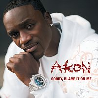 Akon – Sorry, Blame It On Me