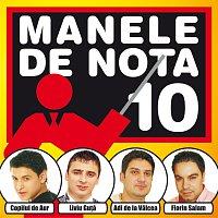 Různí interpreti – Manele De Nota 10
