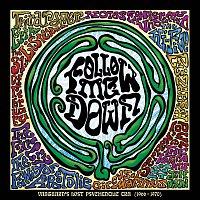 Různí interpreti – Follow Me Down: Vanguard's Lost Psychedelic Era (1966 - 1970)