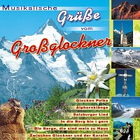 Různí interpreti – Musikalische Grusze vom Grossglockner