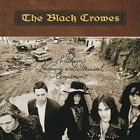 The Black Crowes – The Southern Harmony And Musical Companion