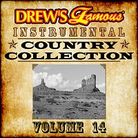 The Hit Crew – Drew's Famous Instrumental Country Collection Vol. 14