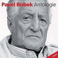 Přední strana obalu CD Antologie (výběr)