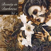 Various Artists.. – Beauty In Darkness