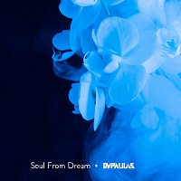 Soul From Dream