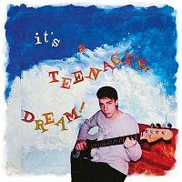 It's A Teenager Dream