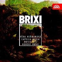 Přední strana obalu CD Brixi: Koncerty pro varhany a orchestr