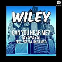 Wiley – Can You Hear Me? (ft. Skepta, JME & Ms D)