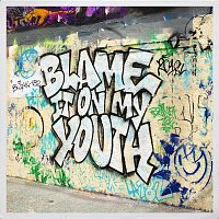 blink-182 – Blame It On My Youth