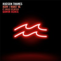 Hudson Thames, Hailee Steinfeld – How I Want Ya [Dawin Remix]