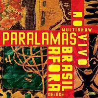 Os Paralamas Do Sucesso – Multishow Ao Vivo Paralamas Brasil Afora [Ao Vivo / Deluxe]