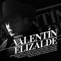 Různí interpreti – Tributo A Valentín Elizalde