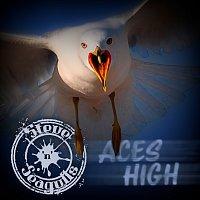 Steve 'n' Seagulls – Aces High