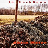 Ahrin Mateo – In Lockdown
