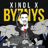 Xindl X – Byznys