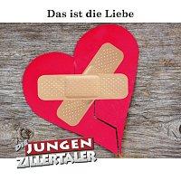 Die jungen Zillertaler – Das ist die Liebe [Radio Edit]