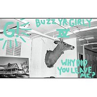 Geronimo – Buzz Yr Girlfriend: Vol. 4 - Why Did You Leave Me?